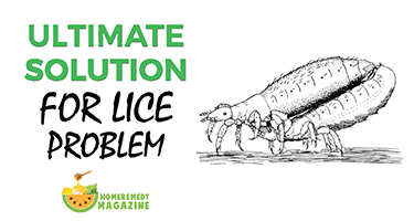 ultimate_solution_for_lice_problem